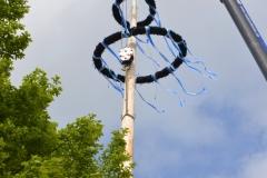 Maibaum 2019: Nun hängt der Baum fast senkrecht.