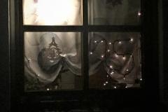 Beim 15. Adventsfenster bei Familie Helbig haben wir die Geschichte vom Engel gehört, der nicht mitsingen möchte und so als Friedensbote auf der Erde wirkt.